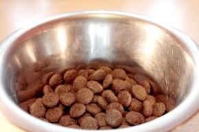 Složení psích krmiv se mění - opravdu je to tak ?